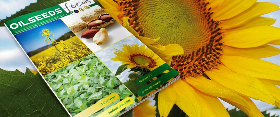 Cover image of Oilseeds Focus Vol 4 No 2